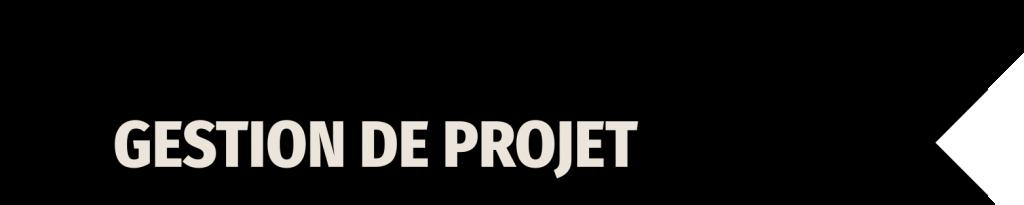 <h2>Formations Gestion de projet</h2>