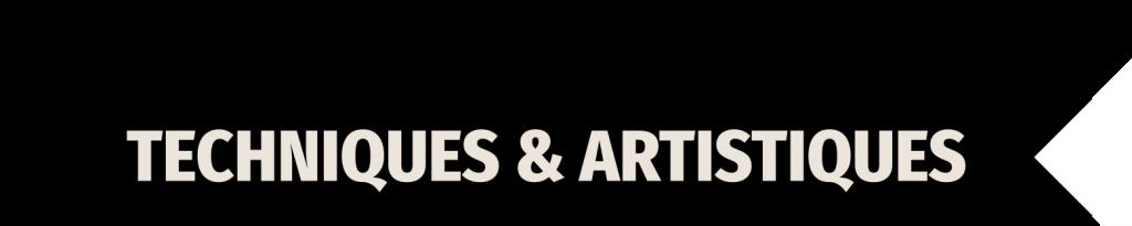 <h2>Formations Techniques & Artistiques</h2>